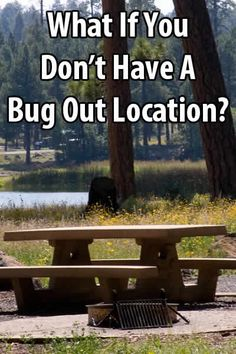 If you can afford a remote piece of land or if you have friends in the countryside, great. But what are those of us without a bug-out-location to do?