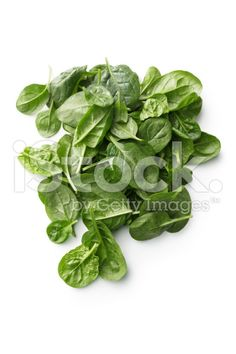 Vegetables: Spinach royalty-free stock photo