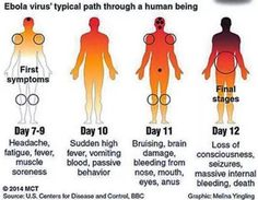 """Another """"Sick"""" American Undergoing Ebola Testing, This Time In Columbus [Update: Tested Negative] 