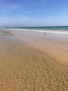 **Cabanas de Tavira beach, Cabanas: See 582 reviews, articles, and 214 photos of Cabanas de Tavira beach, ranked No.1 on TripAdvisor among 4 attractions in Cabanas.