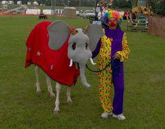 White Legged Elephant  2013 Triple Crown Halloween Horse Costume Contest