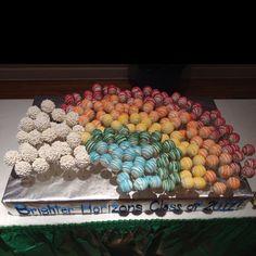 Brighter Horizons Graduation Cake Pop Cake!