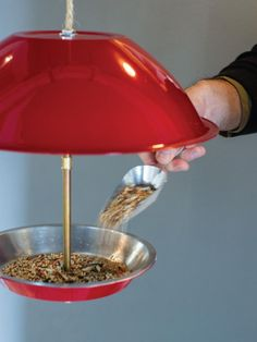 Feed your feathered friends in style with this easy-to-make bird feeder. Plants To Attract Hummingbirds, How To Attract Birds, Bird House Plans, Bird House Kits, Make A Bird Feeder, Bird Feeders, How To Make Butterfly, Kissing Ball, Bird Aviary