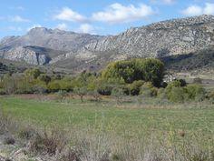 countryside nr Benoaján (Málaga) © Robert Bovington   http://bobbovington.blogspot.com.es/2015/08/white-towns-of-andalusia-pueblos.html