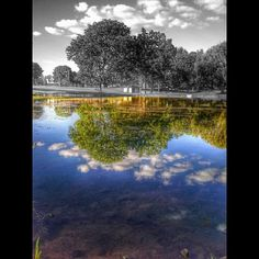 A completely different use of color splash from is today's Pic of the Day. What a nice idea: Instead of using color splash to make a specific object stand out, this photo puts all the color in a reflection. Nicely done! Nicely Done, Computer Art, Black And White Pictures, S Pic, Design Tutorials, Photo Manipulation, Free Photos, All The Colors, Color Splash