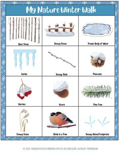 12 Fun Christmas Scavenger Hunt Printables (Outdoors, Indoors and Clues!)
