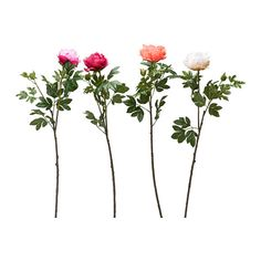 SMYCKA Artificial flower, Peony assorted colours