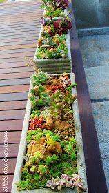 ABC das Suculentas: Floreiras recheadas de suculentas