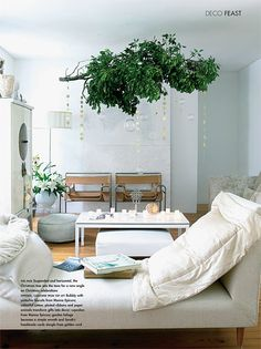 Genneth Lyn website - hanging branch/plant in the middle of the room, love it!