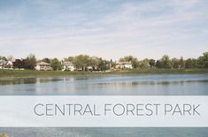 From ramblers to bungalows to large Victorian homes, Central Forest Park offers a variety of detached, single-family homes with a suburban feel right next to a golf course! Family Homes, Home And Family, Baltimore Neighborhoods, City Limits, Forest Park, Bungalows, Victorian Homes, Single Family, Great Places