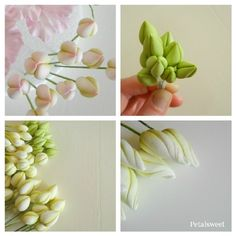 Great Bud tutorial - used this when I had to make a wedding cake with NO previous experience! The Petalsweet Blog: Petalsweet Bud Tutorials