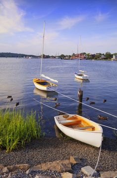 Mystic River with small sailboats © George H. H. Huey