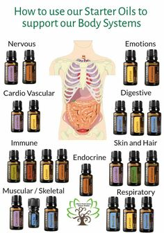 Appropriately, some smells, like that of Lavender oil, trigger stress-relief. They cause a production of chemicals and hormones that produce favorable sensations and raise happiness. Essential Oils Guide, Doterra Essential Oils, Doterra Blends, Essential Oils Anxiety, Stress Relief Essential Oils, Cooking With Essential Oils, Oregano Essential Oil, Essential Oil Spray, Essential Oils For Sleep