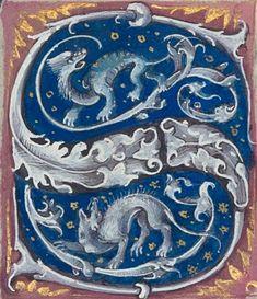 Medieval Dragon, Medieval Art, Illuminated Letters, Illuminated Manuscript, Letter S Calligraphy, Eslava, Monuments, Illumination Art, Embroidery Alphabet