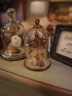 Micro Mini Seahorse Cloche Display by StudioOneTwelve on Etsy, $42.00
