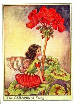 Geranium Fairy Print or any of the original vintage Cicely Mary Barker