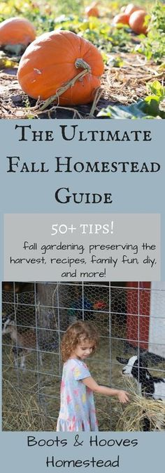 The Ultimate Fall Homesteading Guide - Boots & Hooves Homestead