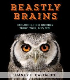 An educator guide with Common Core Connections for Beastly Brains by Nancy Castaldo