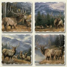Mountain Meadows (American Elk) Coaster SetFor $12.99
