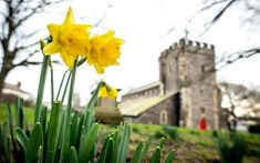 First Day of Spring How the vernal equinox marks the changing seasons Beginning Of Spring, First Day Of Spring, Spring Time, Autumnal Equinox, Vernal Equinox, Iranian New Year, March Equinox, Spring Lambs, Night Hairstyles