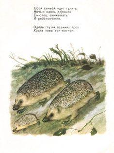 Рисунко в книге С.Я. Маршак Тихая сказка