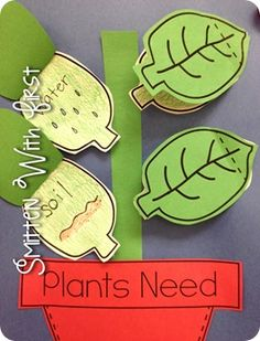 Teaching kids about plants - tops or bottoms (leaves or roots) and other plant-t. Teaching kids about plants - tops or bottoms (leaves or roots) and other plant-themed science activities. First Grade Science, Primary Science, Kindergarten Science, Elementary Science, Teaching Science, Science For Kids, Science Activities, Teaching Kids, Science Ideas