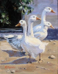 White Geese at the Country Farm Goose farm by ViktoriaMajesticArt, $165.00