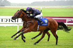 Rhododendron (IRE) 2014 B.f. (Galileo (IRE)-Halfway To Heaven (IRE) by Pivotal (GB) 1st Debutante S (IRE-G2,7fT,Curragh)