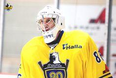 Matt Dalton ::: Anyang Halla Ice Hockey Club :::