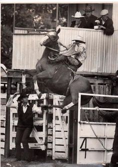 Believe it or not, the filly in this photo was a racehorse in her first career. Her name was Clarrie and she had a bad habit of bucking off jockeys and exercise riders. Clarrie became a rodeo horse and apparently loved her job. She even set a height record for horses coming out of the shoot.