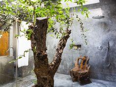 Areias do Seixo | Architecture & Design | Tree Rooms | http://www.areiasdoseixo.com/