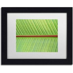 Trademark Fine Art 'Leaf Texture V' Canvas Art by Cora Niele, White Matte, Black Frame, Size: 16 x 20, Multicolor