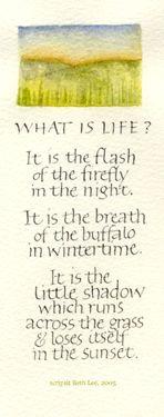 What is Life? artwork Callibeth.com