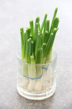 Snijdt van bosuitjes af wat je nodig hebt voor een recept. Plaats de witte uibolletjes vervolgens in een glas of potje met een beetje water. Ze groeien dan vanzelf weer aan en geven je nieuwe bosui om te gebruiken! Bron: milieudefensie