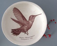 justmare*etsy    A Rufous Hummingbird graces the inside of this stoneware bowl    The bowl is glazed a satin white with rhubarb speckles. I used an iron rich transfer process to apply the graphic images with a third firing. The glazes are of course lead free and food safe.