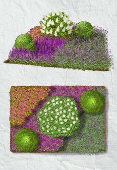 """Einfacher Vorgarten Die bodendeckende Bepflanzung bildet einen Dreiklang aus dem Spierstrauch """"Firelight"""", dem blaulilafarbenen Salbei """"Ostfriesland"""" und dem Lavendel """"Dwarf Blue"""". Von Juni bis September erweist sich der Gartenoder Ziersalbei als ein unermüdlicher Blüher, der mit seinen blauen bis violetten Scheinähren (Nachblüte nach Schnitt) einen schönen Blütenteppich bildet und dem angenehm duftenden Lavendel die Bienen abwirbt."""