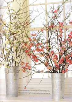 these arrangements of flowering quince branches to accompany modern decor