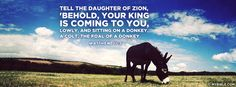 Matthew 21:5 NKJV - Tell the Daughter of Zion - Facebook Cover Photo