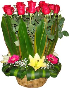 Plants, Red Roses, Flowers, Baskets, Floral Arrangements, Presents, Wicker, Plant, Planets
