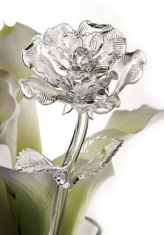 Place mouse over image for a different view. Waterford Crystal Fleurology Rose