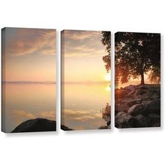 ArtWall Steve Ainsworth Renewal 3-Piece Gallery-wrapped Canvas Set, Size: 24 x 36, Orange