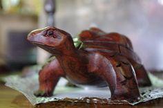 Tortuga de madera - Wooden turtle
