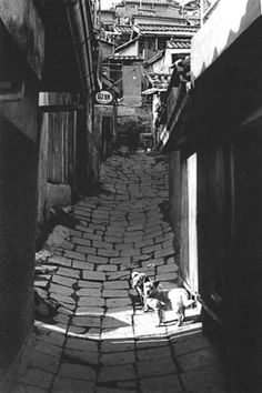 Photo by Kim Ki-chan Alley inside landscape Kim Ki-chan Born in Seoul in 1938 Korean Photography, Street Photography, Old Pictures, Old Photos, Time In Korea, Old Street, Matte Painting, Slums, Magnum Photos