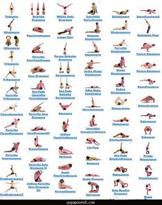 What Is Hatha Yoga? Learn Hatha Yoga Poses With 2 Excellent Videos All Yoga Asanas, Yoga Asanas Names, Vinyasa Yoga Poses, Easy Yoga Poses, Yoga Poses For Beginners, Yoga Poses With Names, Yoga 1, Yoga Sequences, Baba Ramdev Yoga