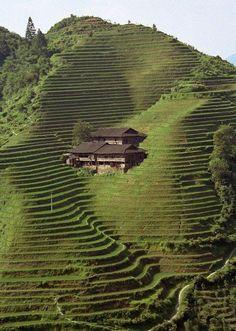 Quand à l' architecture japonaise contemporaine,on doit souligner que elle se développe rapidement,en conservant son air traditionnel. Voilà Japon en photos