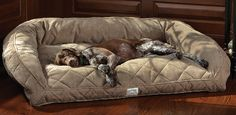 Deep Dish Dog Bed / Large dogs up to lbs Large Dog Crate, Large Dogs, Small Dogs, Cama Junior, Dog Couch, Dog Furniture, Cool Dog Beds, Dog Rooms, Large Dog Breeds