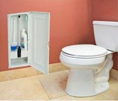 mounting a storage cabinet between the studs in your wall to house the plunger, toilet bowl brush and cleaner.