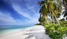 Mentawai Island - Indonesian Surf Travel