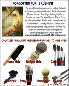 Choose SYNTHETIC; Cruelty-FREE brushes! {*I'm an oil painter, and a make up artist, and I can tell you personally that good synthetic brushes work equally well--in some cases, BETTER--than real hair. On top of that, they're generally much cheaper.} Help END the suffering of these beautiful creatures.. Spread the message.