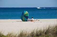 Pompano Beach Is Truly Nature S Aquarium The Gulf Stream Provides Some Of